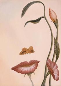 cara flor